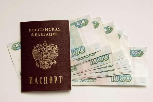 Паспорт заемщика